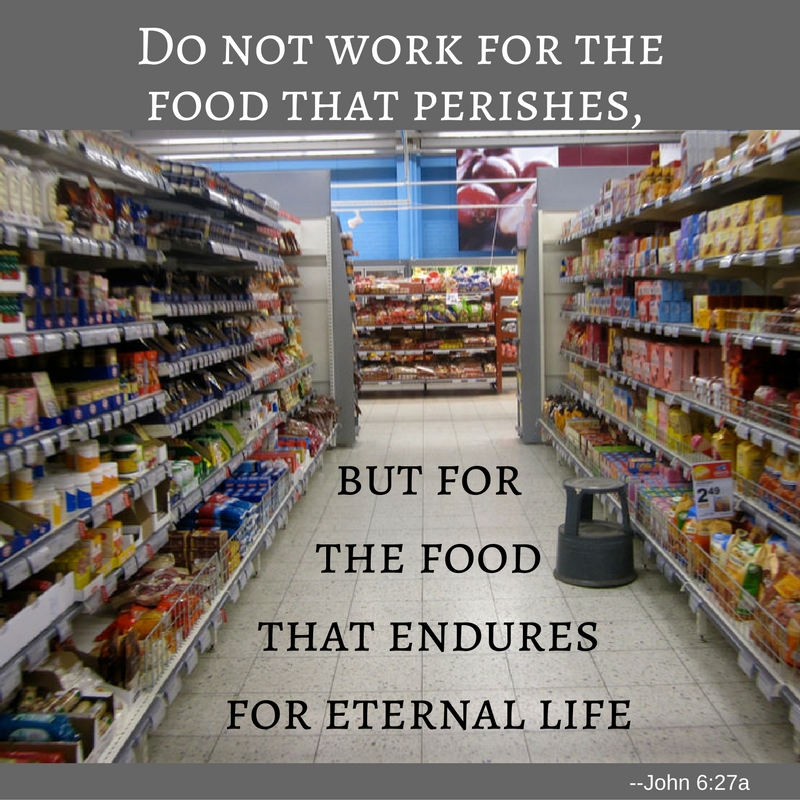 do-not-work-for-the-food-that-perishes-but-for-the-food-that-endures-for-eternal-life
