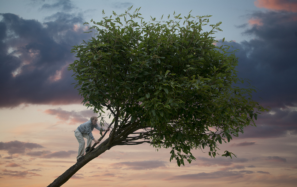 Climbing Trees by lapseoftheshutter